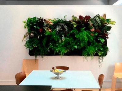 ¿Qué beneficios producen los jardines verticales?