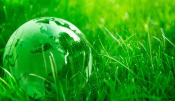 ¿Por qué ofrecer regalos de empresa ecológicos?