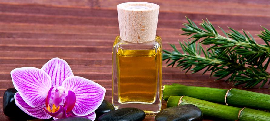 Olivos en áreas de spa y relajación